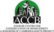 ACCB logo