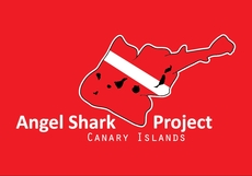 angelsharkproject