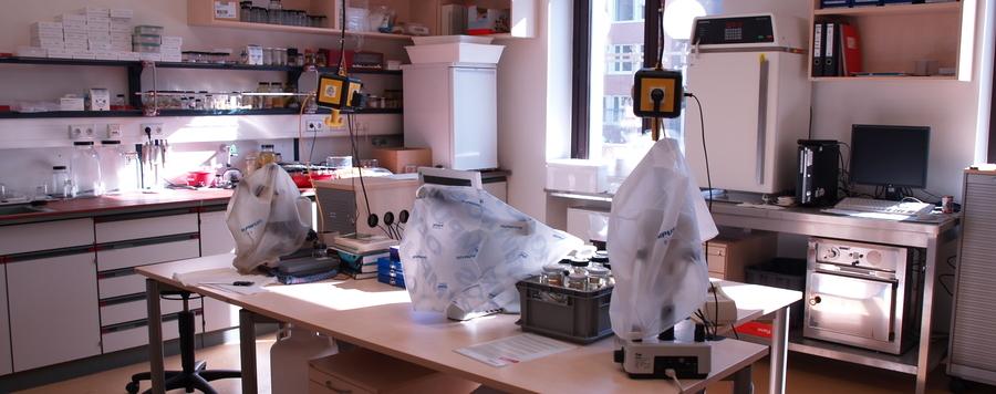 Laboratory Zfmk Zoological Research Museum Alexander Koenig