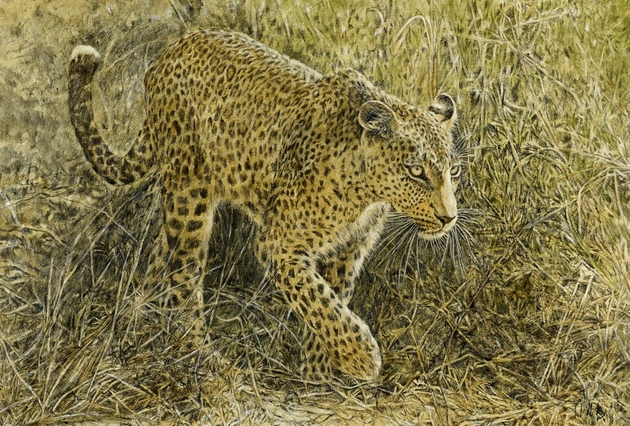 Leopard, Leopard, Mixed Media, 89 x 61 cm
