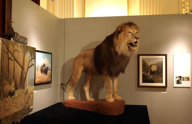 Aufgesteller Löwe von der Seite