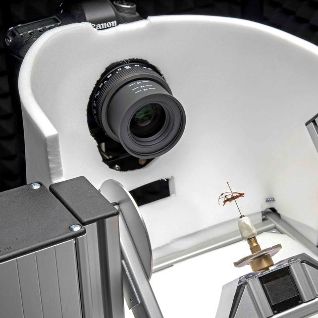 """-""""ZooSphere"""", ein Instrument zur automatischen 3D-Digitalisierung von Insekten;  Museum für Naturkunde Berlin   Leibniz-Institut für Evolutions- und Biodiversitätsforschung."""