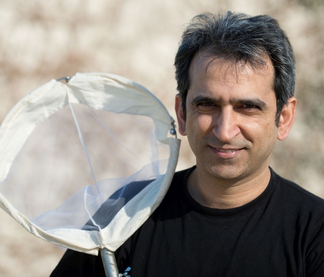 Portrait: Dr. Hossein Rajaei ist Kurator für Schmetterlinge am Staatlichen Museum für Naturkunde Stuttgart. Urhebervermerk: SMNS, A. Staniczek