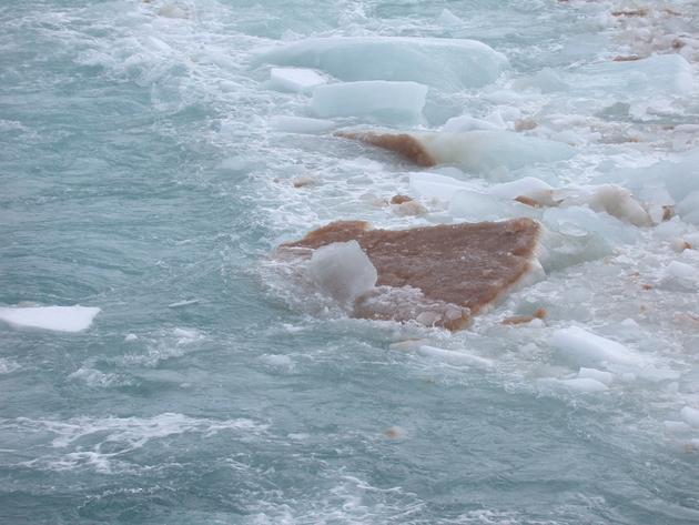 Färbung des Eises im Süpolarmeer durch Algen.