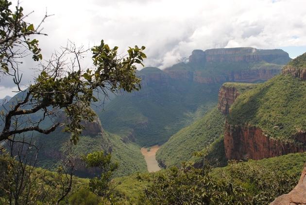 Waldreste in den tiefen Schluchten des Blyde-River Canyons. Hier sind Wälder weitgehend von Feuern und Abholzung verschont geblieben.