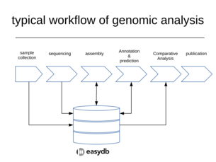worklow of genomic data analysis