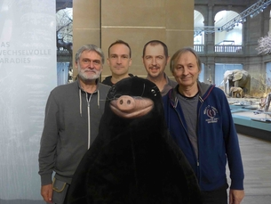 Die Forscher. Von links nach rechts, B. Kryštufek, J. Astrin, N. Nedyalkov und R. Hutterer.