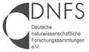 Logo DNFS